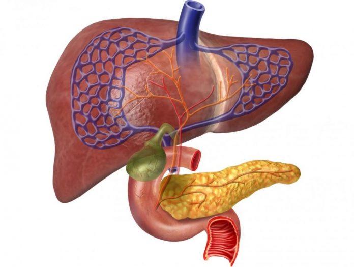 Билирубин при панкреатите