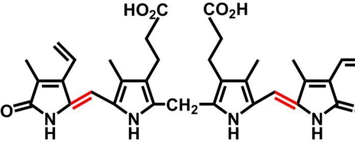 билирубин связанный