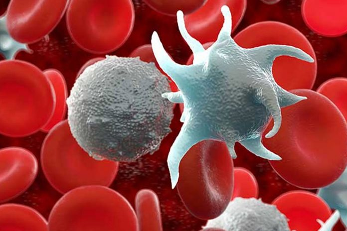 как взаимосвязаны тромбоциты и билирубин