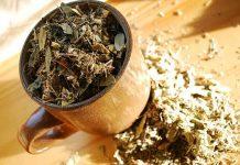травы от билирубина